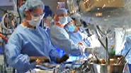 Biomedical Engineering at the Mayo Clinic