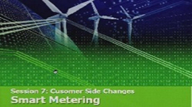 IEEE Smart Grid World Forum - Branke Bjelajac
