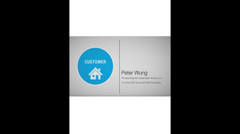 Customer Domain - Peter Wung