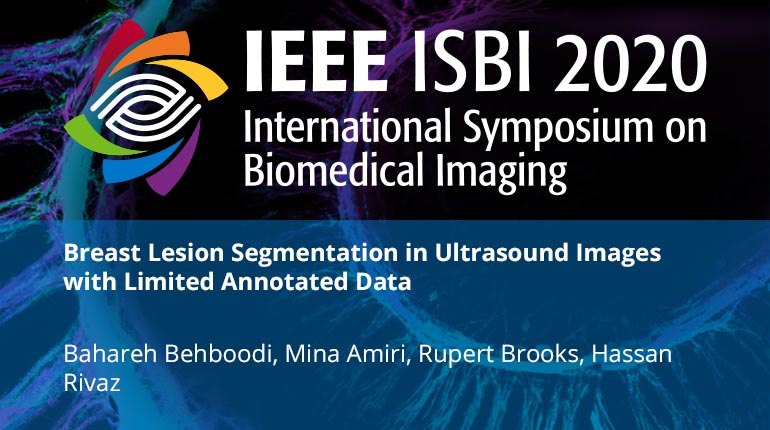 Breast Lesion Segmentation in Ultrasound Images with Limited Annotated Data
