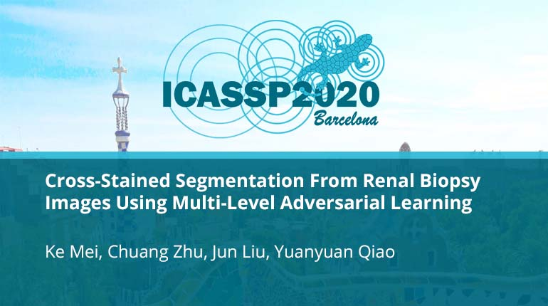Cross-Stained Segmentation From Renal Biopsy Images Using Multi-Level Adversarial Learning