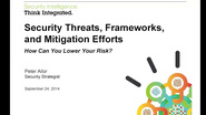 Security Frameworks, Strategies, & Mitigation Efforts