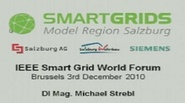 IEEE Smart Grid World Forum - Michael Strebl