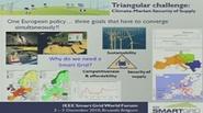 IEEE Smart Grid World Forum - Ronnie Belmans