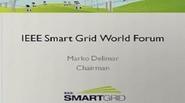 IEEE Smart Grid World Forum - Marko Delimar