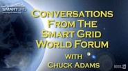 Standards and the Future of Smart Grid