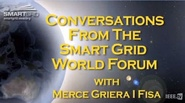 Energy Efficiency and the European Smart Grid