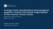 IEEE Brain: A Large-scale Standardized Physiological Pipeline Reveals Functional Organization of the Mouse Visual Cortex