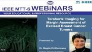 Terahertz Imaging for Margin Assessment of Excised Breast Cancer Tumors Video