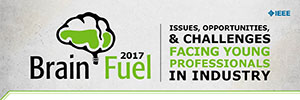 Brain Fuel: Issues, Opportunities, and Challenges Facing Young Technology Professionals in Industry