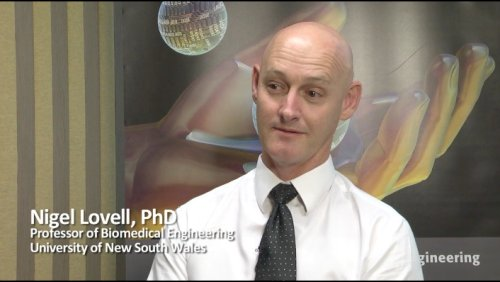 Life Sciences: Visual Prosthetics Bioengineering, Nigel Lovell