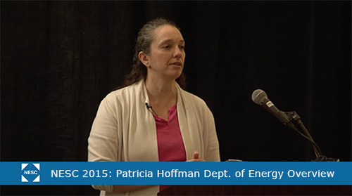 The NESC Summit 2015: Department of Energy Overview: Patricia Hoffman Keynote