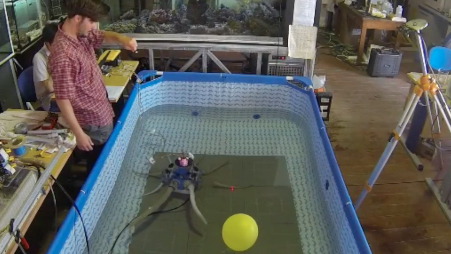 Octopus-Inspired Robot Can Grasp, Crawl and Swim -- IEEE Spectrum Report