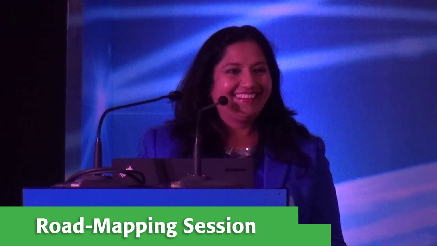 Road-Mapping Session with Deepa Prahalad at Internet Inclusion: Advancing Solutions, Delhi, 2016