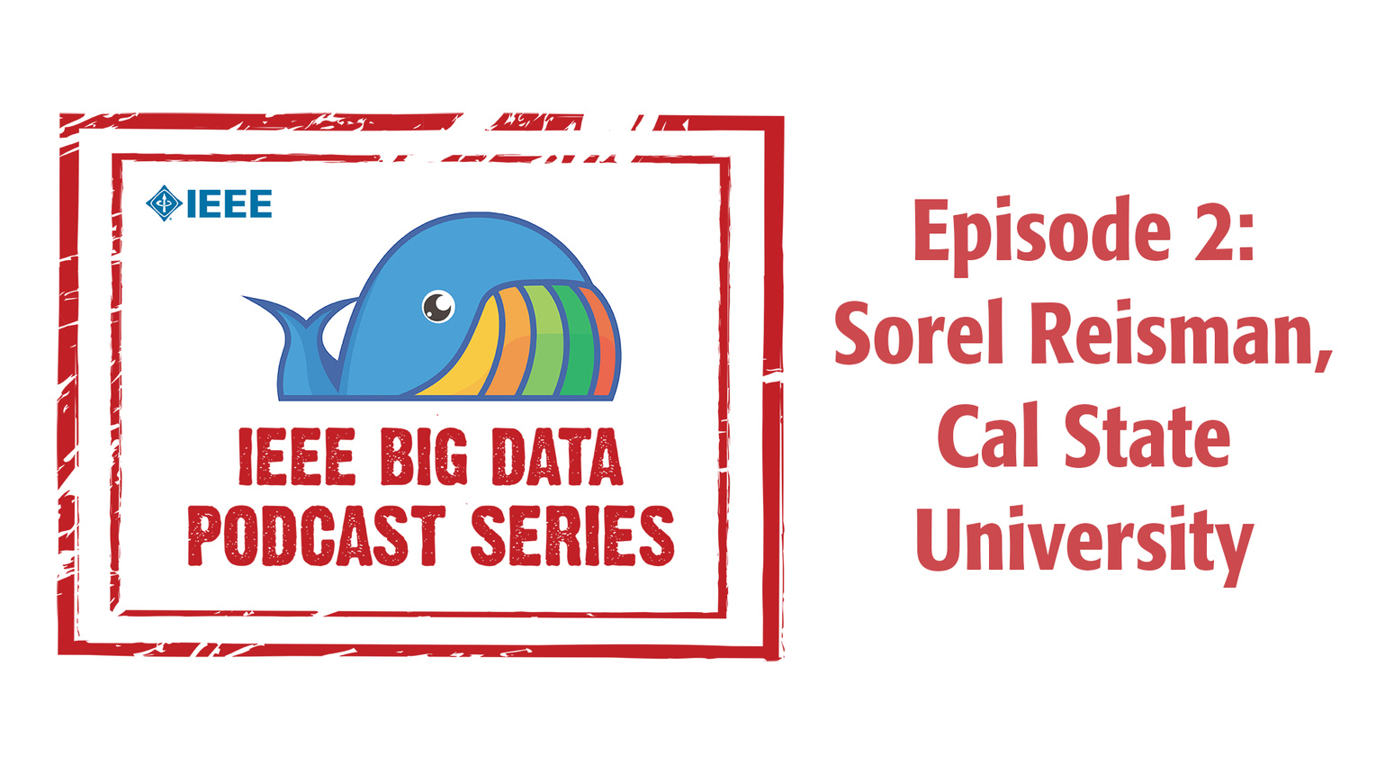 Q&A with Dr. Sorel Reisman: IEEE Big Data Podcast, Episode 2