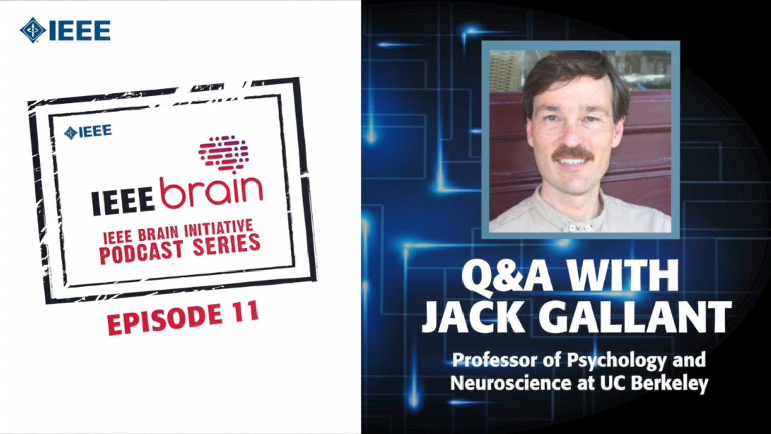 Q&A with Jack Gallant: IEEE Brain Podcast, Episode 11