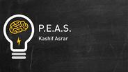 Performance, Environment, Actuators, Sensors (PEAS)