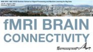 fMRI Brain Connectivity Modelling: Big Data Approaches