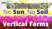 Indoor Vertical Farms: Growing Food Without Sun, Soil or Pesticides