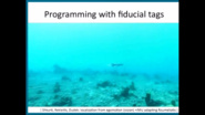 Human-Guided Video Data Collection in Marine Environnment