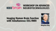 Imaging Human Brain Function with Simultaneous EEG-fMRI - IEEE Brain Workshop