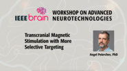Transcranial Magnetic Stimulation with More Selective Targeting - IEEE Brain Workshop