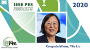 IEEE PES Awards 2020: IEEE PES Wanda Reder Pioneer in Power Award