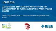 AN ENHANCED DEEP LEARNING ARCHITECTURE FOR CLASSIFICATION OF TUBERCULOSIS TYPES FROM CT LUNG IMAGES