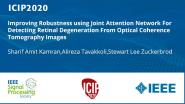 Improving Robustness using Joint Attention Network For Detecting Retinal Degeneration From Optical Coherence Tomography Images