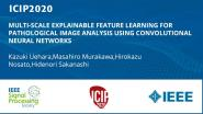MULTI-SCALE EXPLAINABLE FEATURE LEARNING FOR PATHOLOGICAL IMAGE ANALYSIS USING CONVOLUTIONAL NEURAL NETWORKS