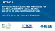 Supervised And Unsupervised Approaches For Controlling Narrow Lexical Focus In Sequence-To-Sequence Speech Synthesis