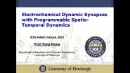 Electrochemical Dynamic Synapses with Programmable Spatio-Temporal Dynamics
